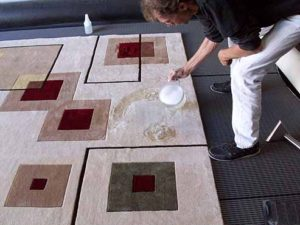 Removing Pet Stains and Odor from an Area Rug