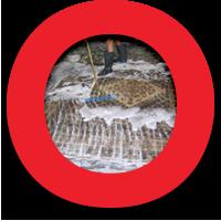 Oriental Express Rug Washing Process: Step 6 Washing